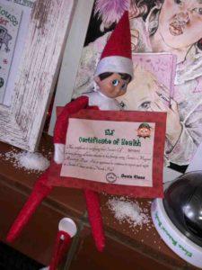 The Elf on the Shelf Certificate of Health Botswana