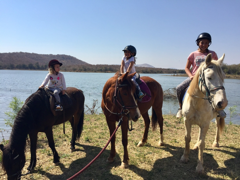 Notwane River Horses