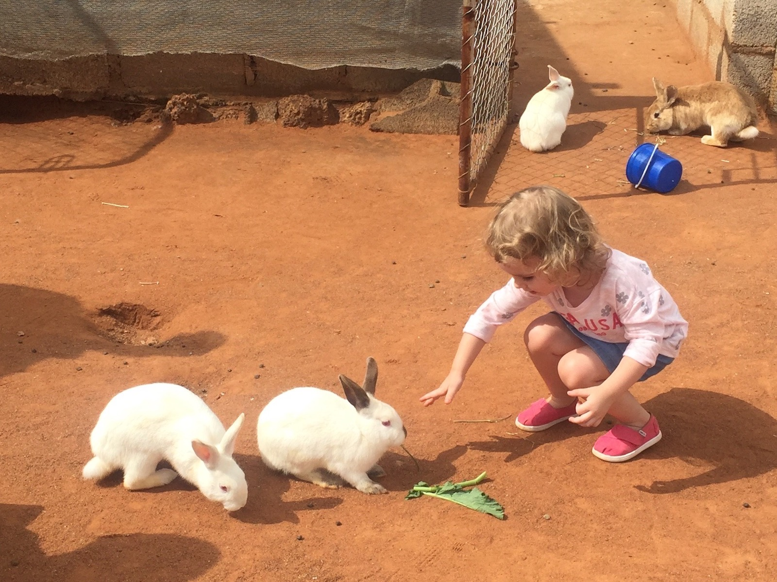 easter in gaborone