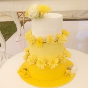 Lamosa cakes