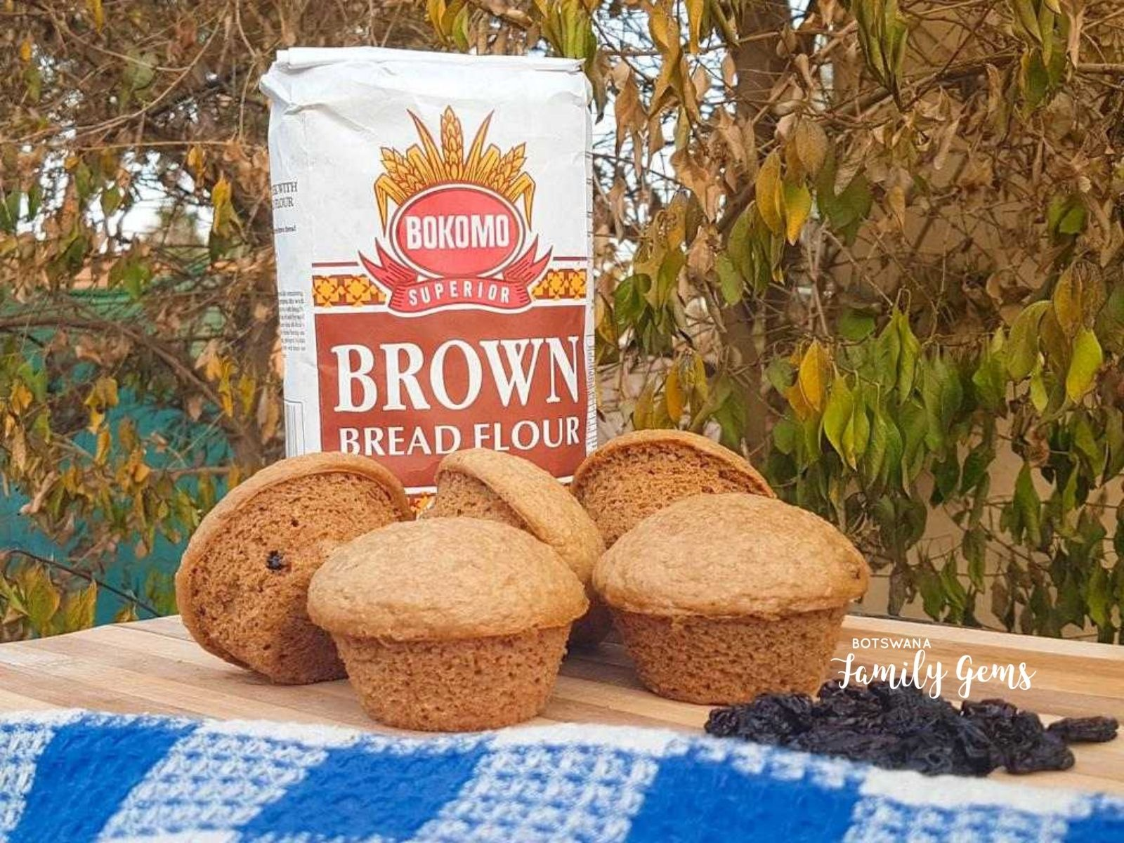 Healthy Vegan Bran Muffins Botswana